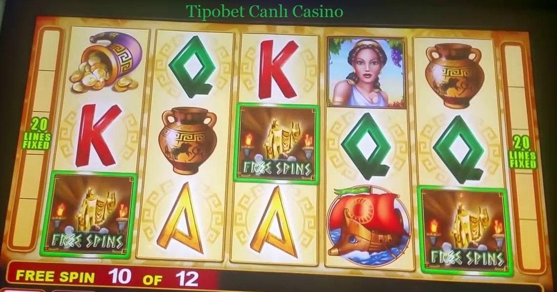 tipobet canli casino sitesi nedir